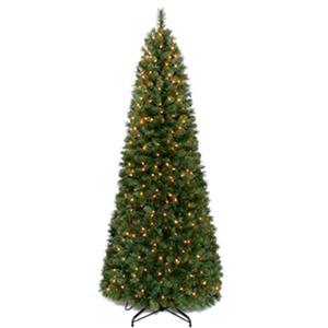 7' Pull Up Prelit Christmas Tree SamsClub Com Auctions - Pull Up Christmas Trees