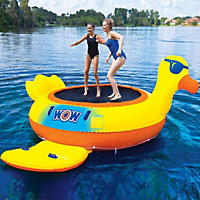 Novelty Air and Water Bouncer