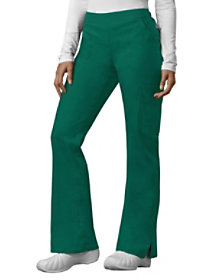 Flare Leg Pants with Certainty
