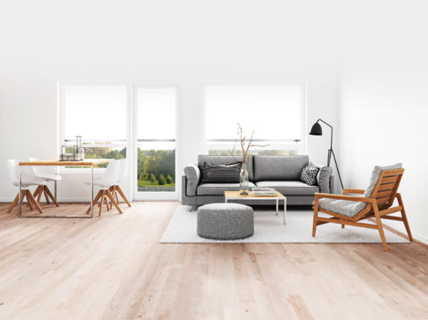 gray couch light wood floor