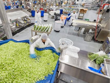 Urethane Slurry Flooring System at Food Processing Facility