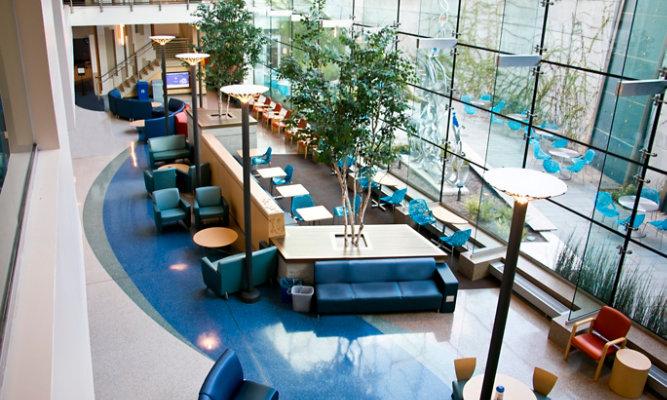 Terrazzo Floor in Hospital
