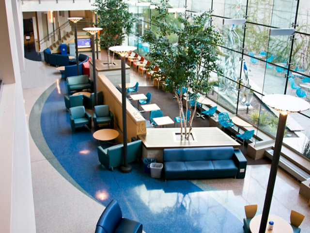 Terrazzo Floor in Hospital Lobby