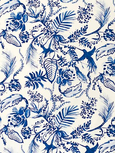 HUMMINGBIRD DAZZLING BLUE