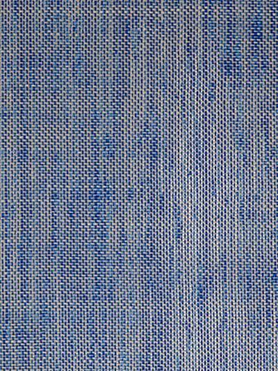 SMARTER FR COBALT BLUE