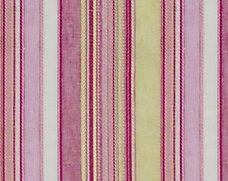 Lily Stripe