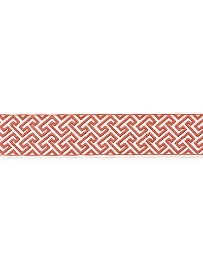 LABYRINTH EMBROIDERED TAPE CORAL
