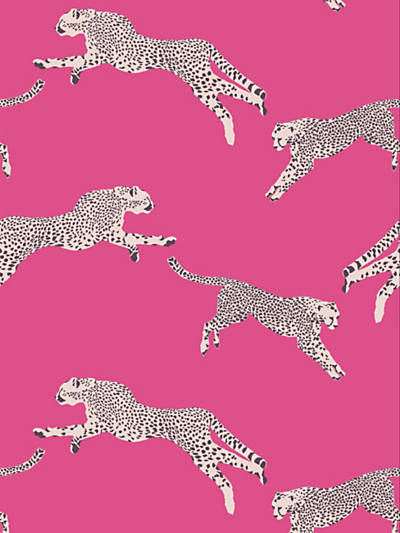 LEAPING CHEETAH BUBBLEGUM