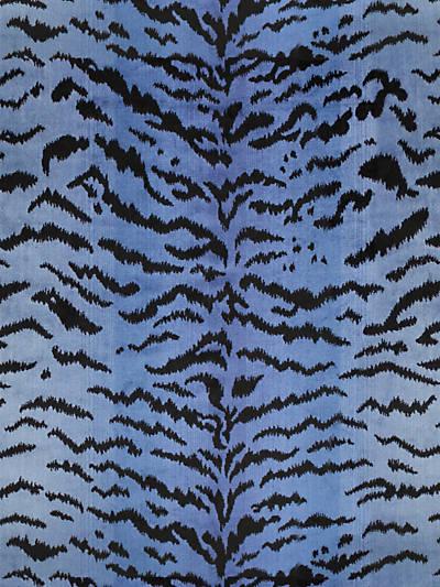 TIGRE BLUES & BLACK