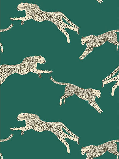 LEAPING CHEETAH EVERGREEN