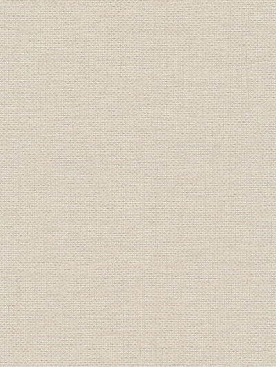 LITHIC WEAVE BEIGE