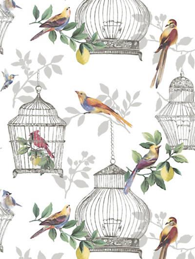 AUDUBON SONGBIRDS ON WHITE