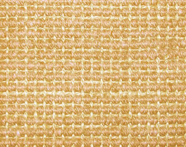 CAPRI 066 CAMEL