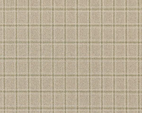 Plaid Carpet Trade Exclusive