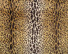 Leopard Velvet Piccolo