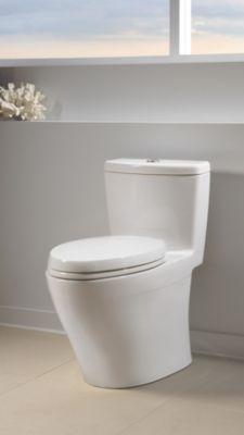 Aquia 174 One Piece Toilet 1 6 Gpf Amp 0 9 Gpf Elongated Bowl
