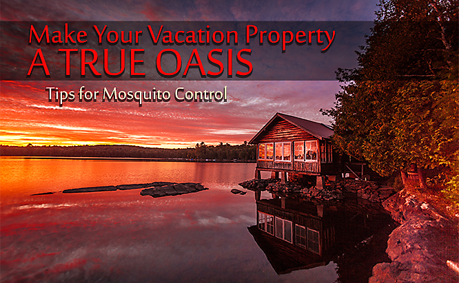 Vacation Rental Mosquito Control