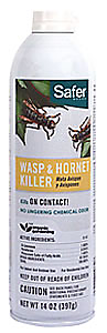Wasp and hornet killer stinging insects