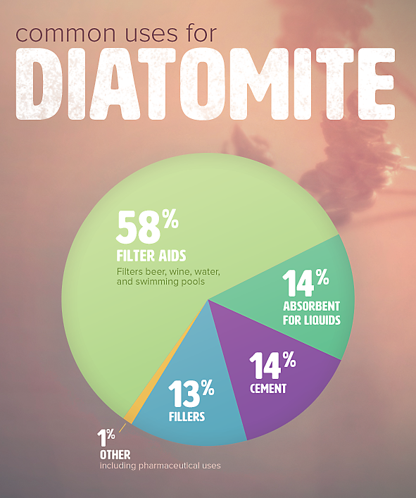 common uses for diatomite