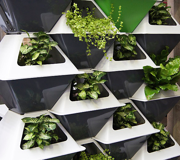vertical garden design idea - Vertical Vegetable Garden Design