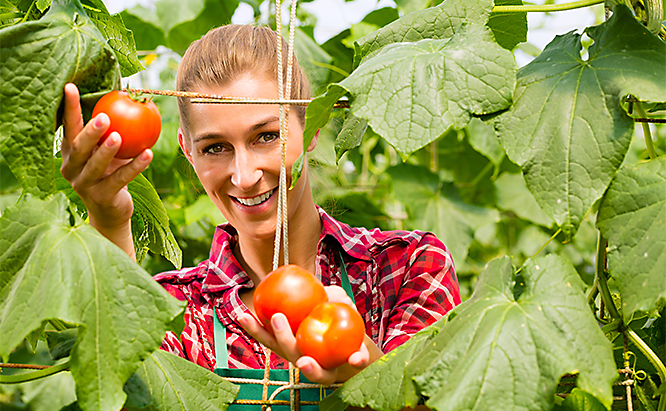 what company provides the most OMRI Listed products for organic gardening?